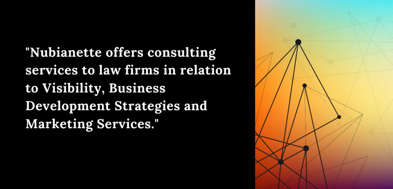 Nubianette Consulting Services